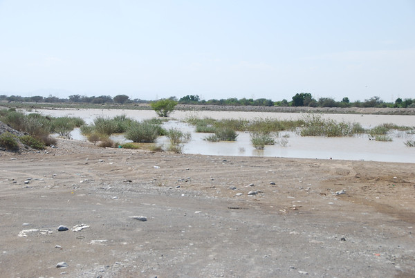 Flooding in Oman, Nov 2011