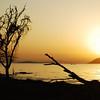 Kenya : Nairobi, Rift Valley, Green Crater, Lake Naivasha, Nakuru National Park, Njoro, Lake Baringo, Kericho.