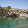 Oman: 19-24 March 2008 : Ibri, Sur, Ras al Hadd, Wahiba Sands