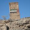 Wadi al Qawr, United Arab Emirates : Along the border fence between the UAE and Oman.  27 Nov 2010